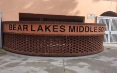 Greetings, Home of the Bear Lakes Bruins!