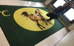 LC Swain…Home of the Stallions!